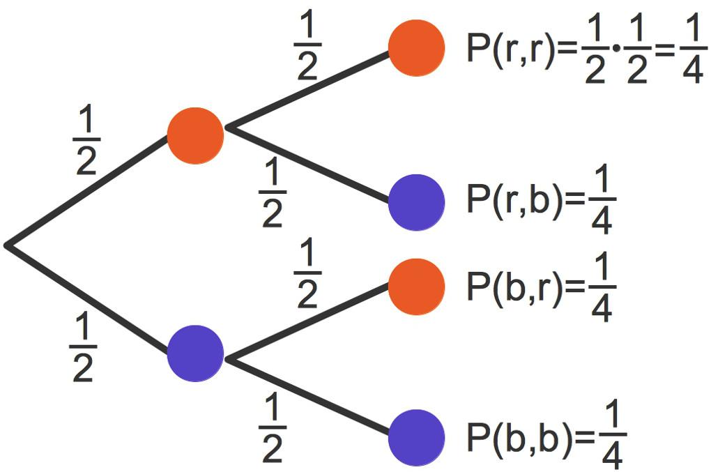 1195_Baumdiagramm_m_Z_1.jpg