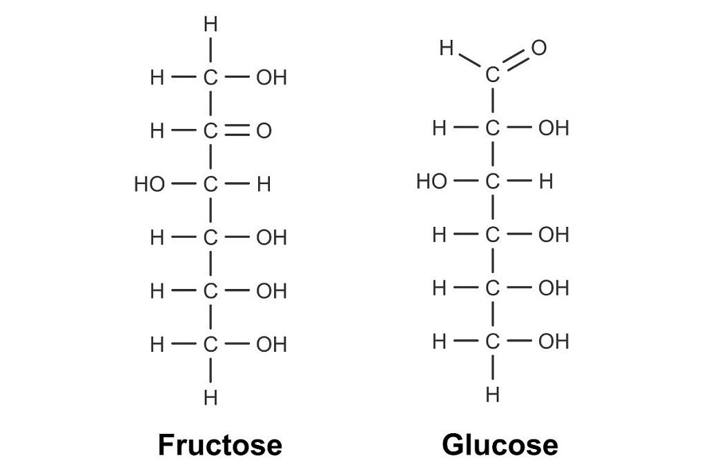 Fructose als Vertreter einer Ketose und Glucose als Vertreter einer Aldose
