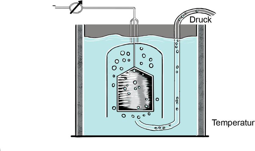 Elektrochemie: Standard-Wasserstoff-Zelle
