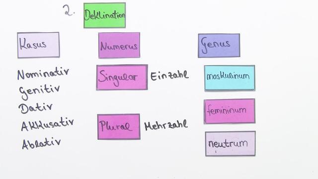 Nomen und ihre Formen