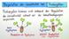 Regulation der Genaktivität bei Prokaryoten