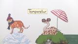 abiotischer Faktor Temperatur – Einfluss auf Tiere