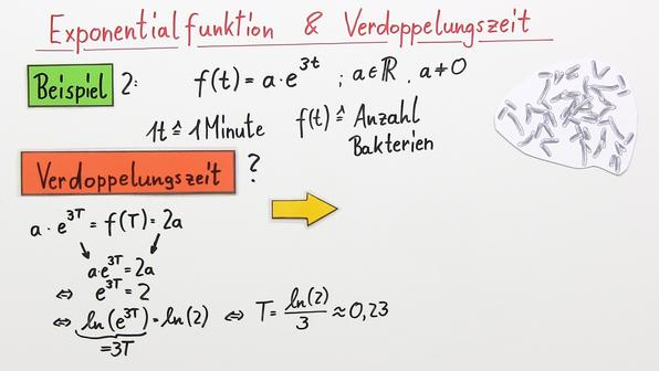 18215 exponentialfunktionen und die verdoppelungszeit   %c3%9cbung.standbild003