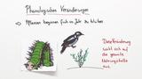 Artenvielfalt – Veränderung und Schutz