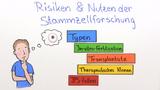 Risiken und Nutzen der Stammzellforschung
