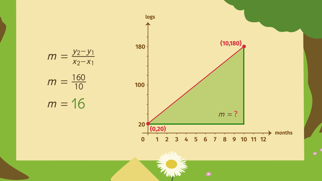 slope fields homework