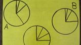 Kreisdiagramm zuordnen