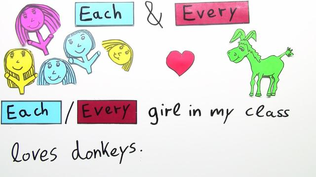 Quantifiers: each and every