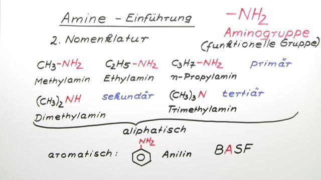 Amine – Herstellung und Eigenschaften
