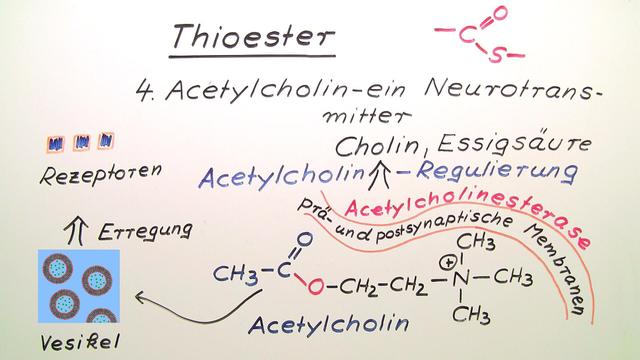 Thioester