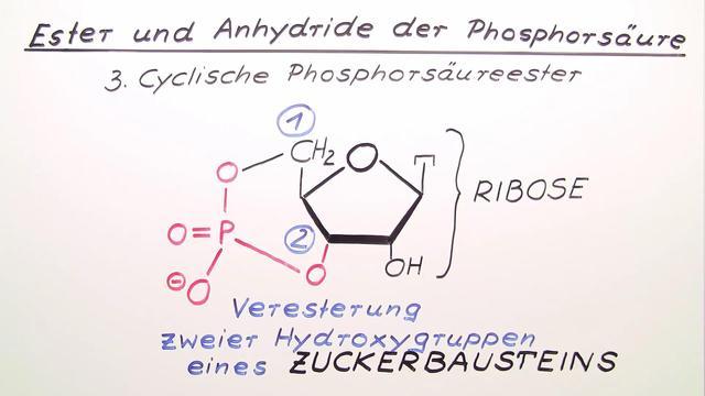 Ester und Anhydride der Phosphorsäure