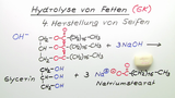 Hydrolyse von Fetten (GK)