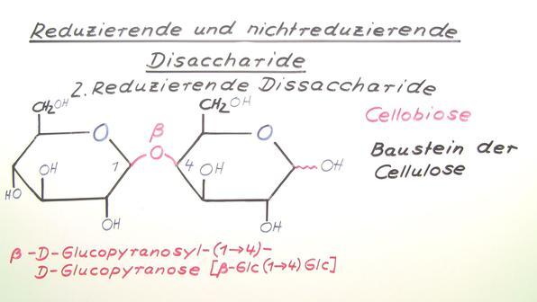 454 reduzierende und nichtreduzierende disaccharide