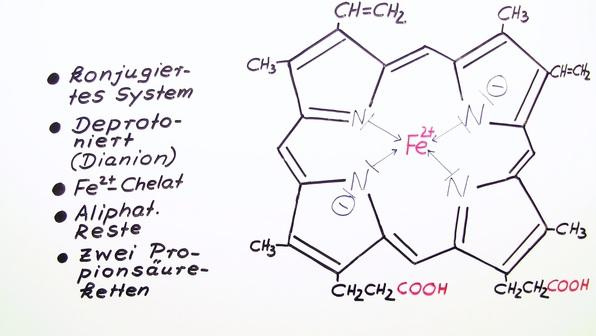 461 m181 f%c3%bcnfgliedrige heterocyclen 3 vom h%c3%a4m zum chlorophyll