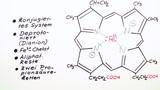 Fünfgliedrige Heterocylen – Vom Häm zum Chlorophyll