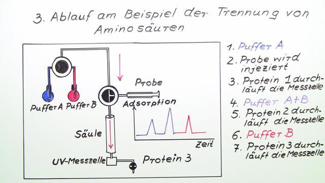 Ionenaustauschchromatographie