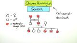 Chorea Huntington – Symptome und Vererbung