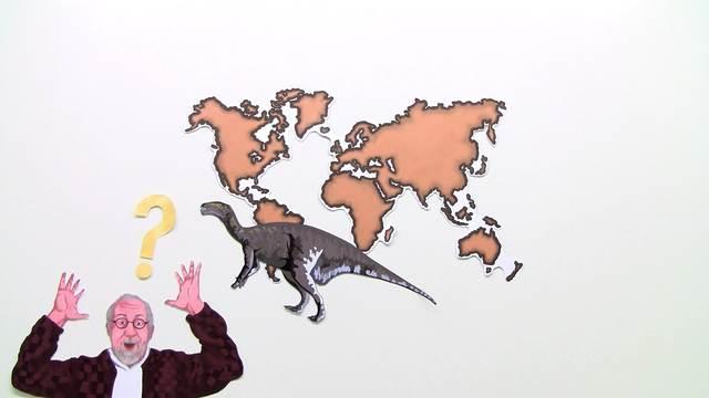 Fossilien – Bedeutung für Forschung und Evolutionstheorie